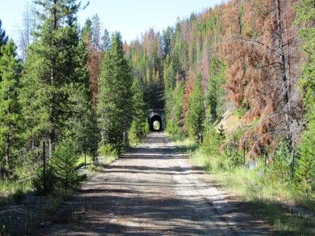 107railtunnel.jpg