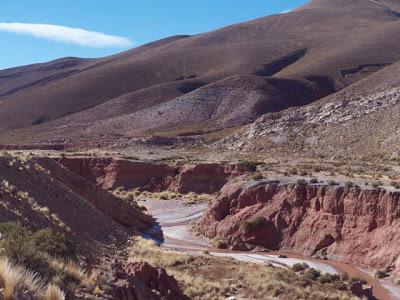 Argentina+-+2917.jpg