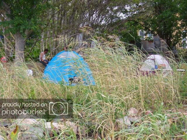 camping_at_dabbs.jpg