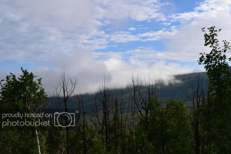 ColoradoTrip2011597.jpg
