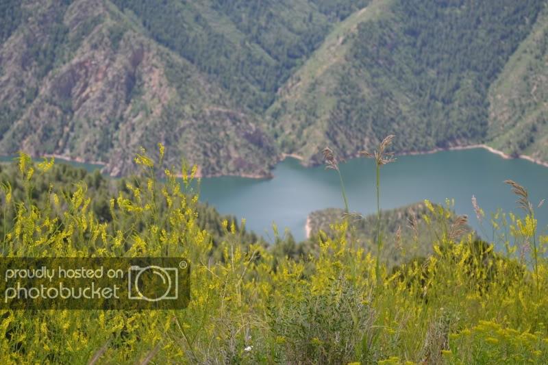 ColoradoTrip2011686.jpg