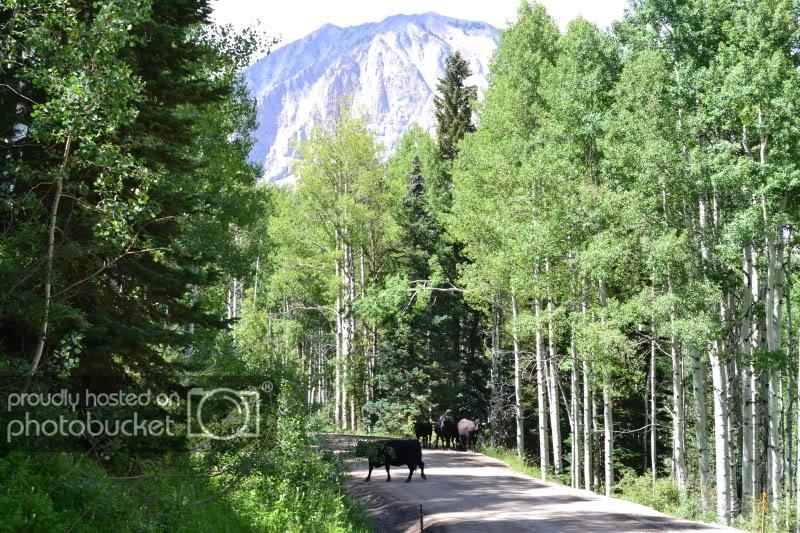 ColoradoTrip2011771.jpg