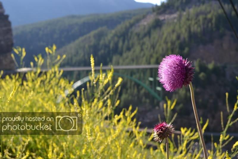 ColoradoTrip2011921.jpg