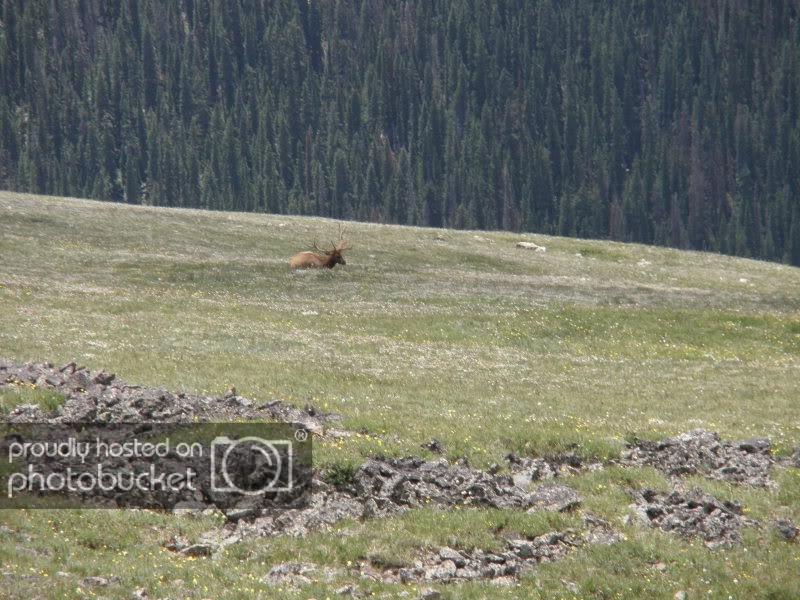 ColoradoTrip2011_DAD277.jpg