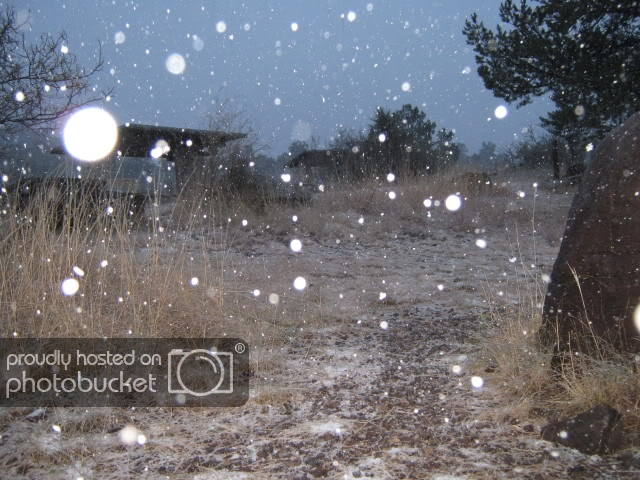 Dec2008136.jpg