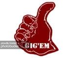 GIGEM-1-1.jpg