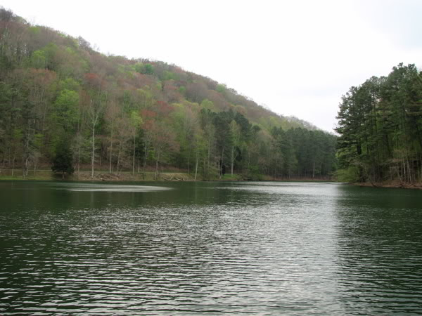 lakeview1.jpg
