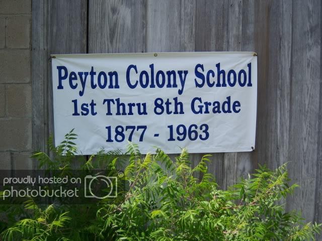PeytonColony007.jpg