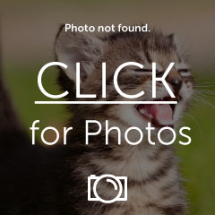 PhotoI_zps6f482ca9.jpg
