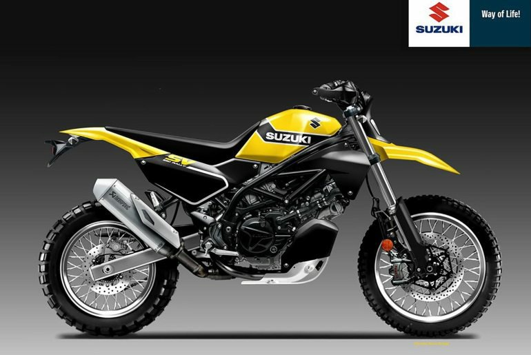 Suzuki-SV650-Rally-Oberdan-Bezzi.jpg