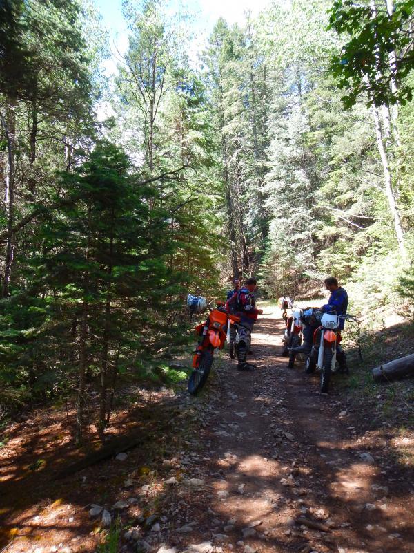 trail-1-1.jpg