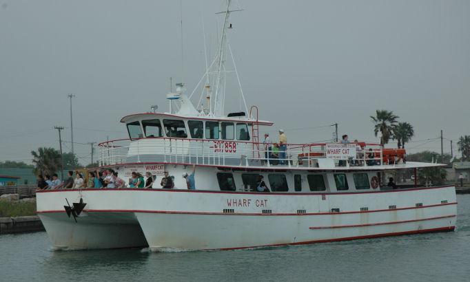 wharfcat_4518q.jpg