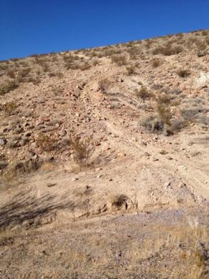 LAB2V Single Track Desert (2) (768x1024).jpg