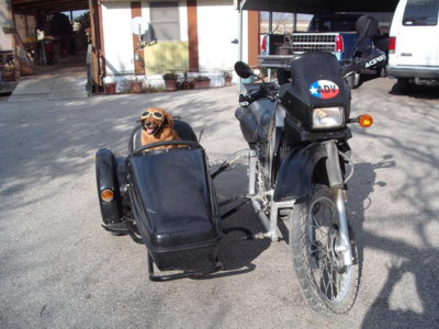 KLR650/Velorex Sidecar SOLD! | Two Wheeled Texans