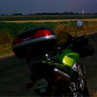 mototeddy